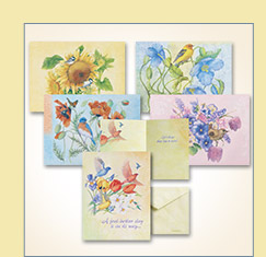 Flights of Fancy Card Assortment - $16.99
