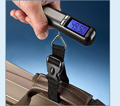 Pack-and-Go Luggage Scale - $16.99