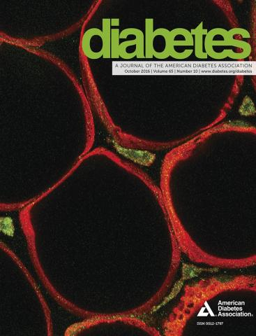 Diabetes Journal cover